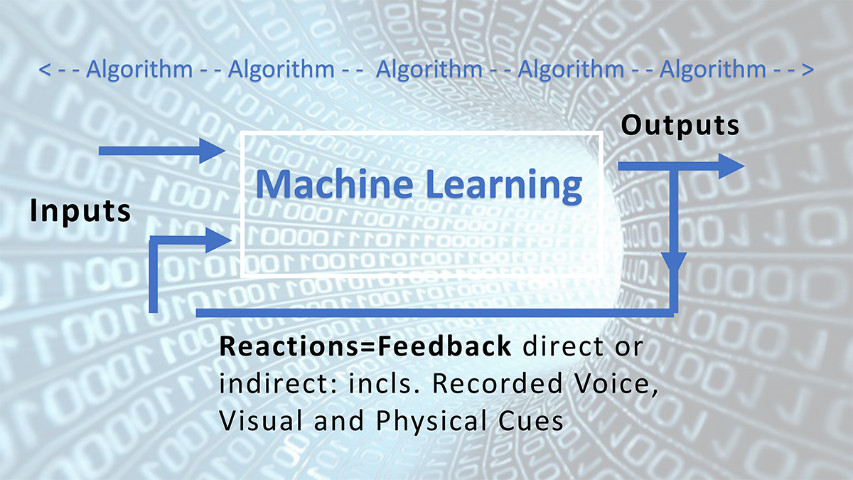 Image showing machine learning and the role of AI, with and inputs, outputs, and feedback.