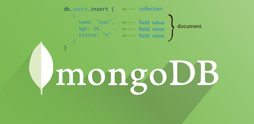 Part 3 — MongoDB Step by Step — Data Types and Basic Operations