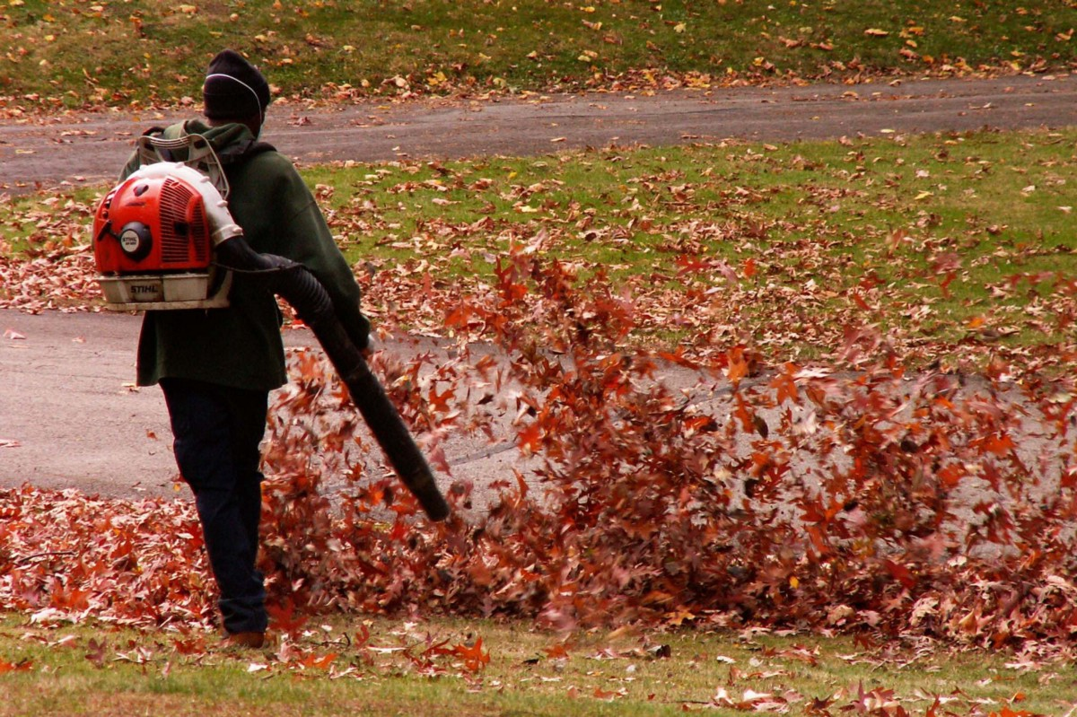 The Gas Powered Leaf Blower Is the Most Polluting Yard Tool Ever Invented