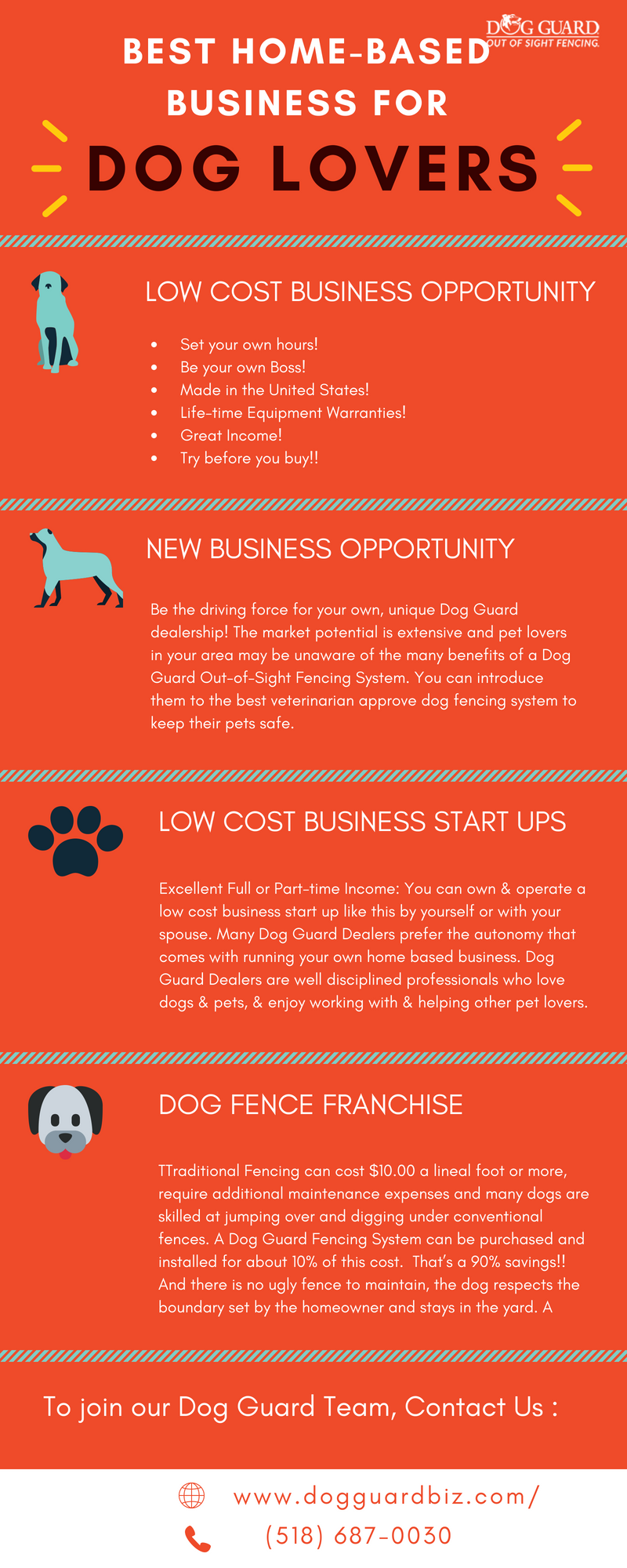 Best Home-Based Pet Business Ideas For Dog Lovers