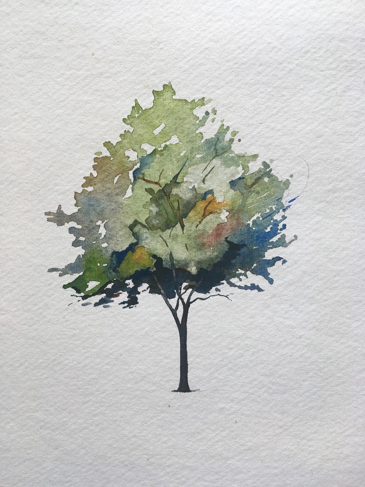 How To Paint A Tree In Watercolors