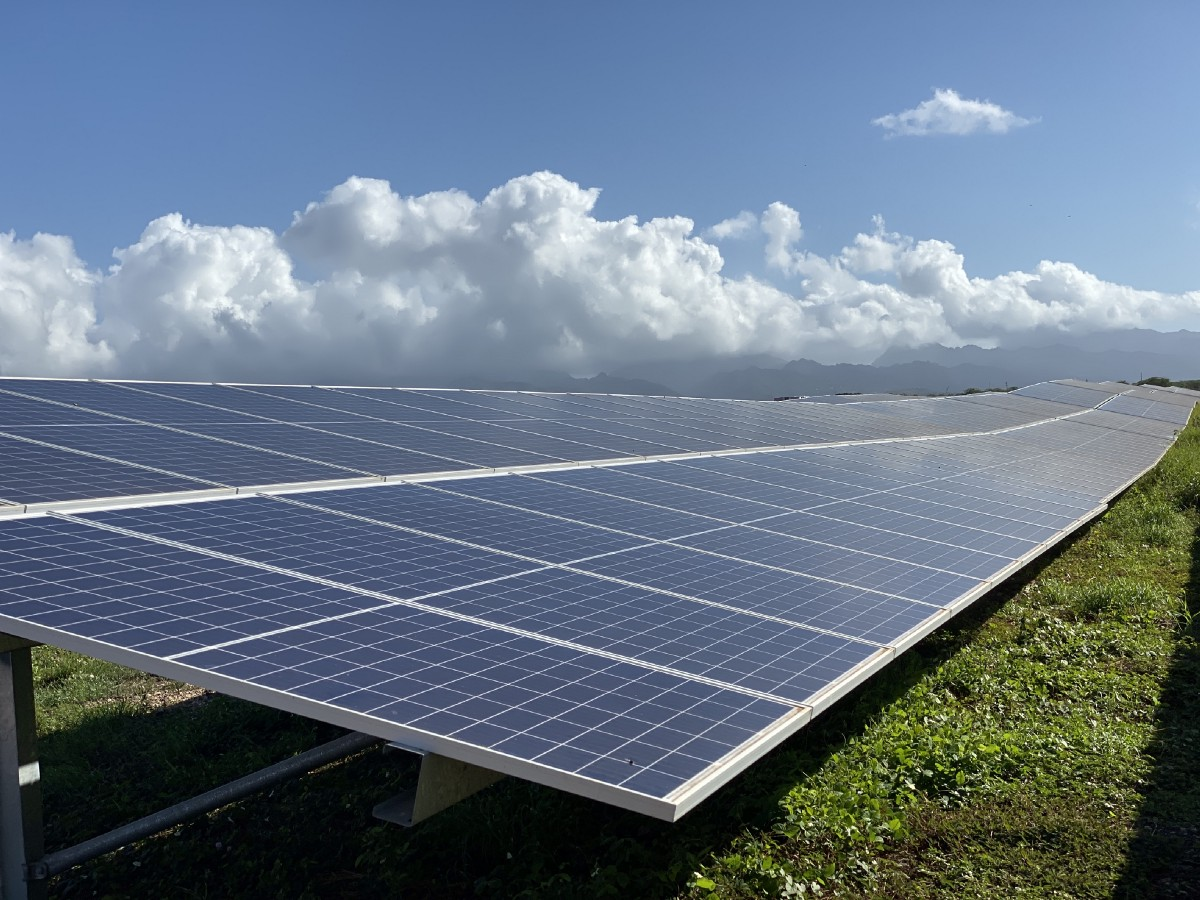 """In with the """"new"""" in 2020 - Hawaiian Electric - Medium"""