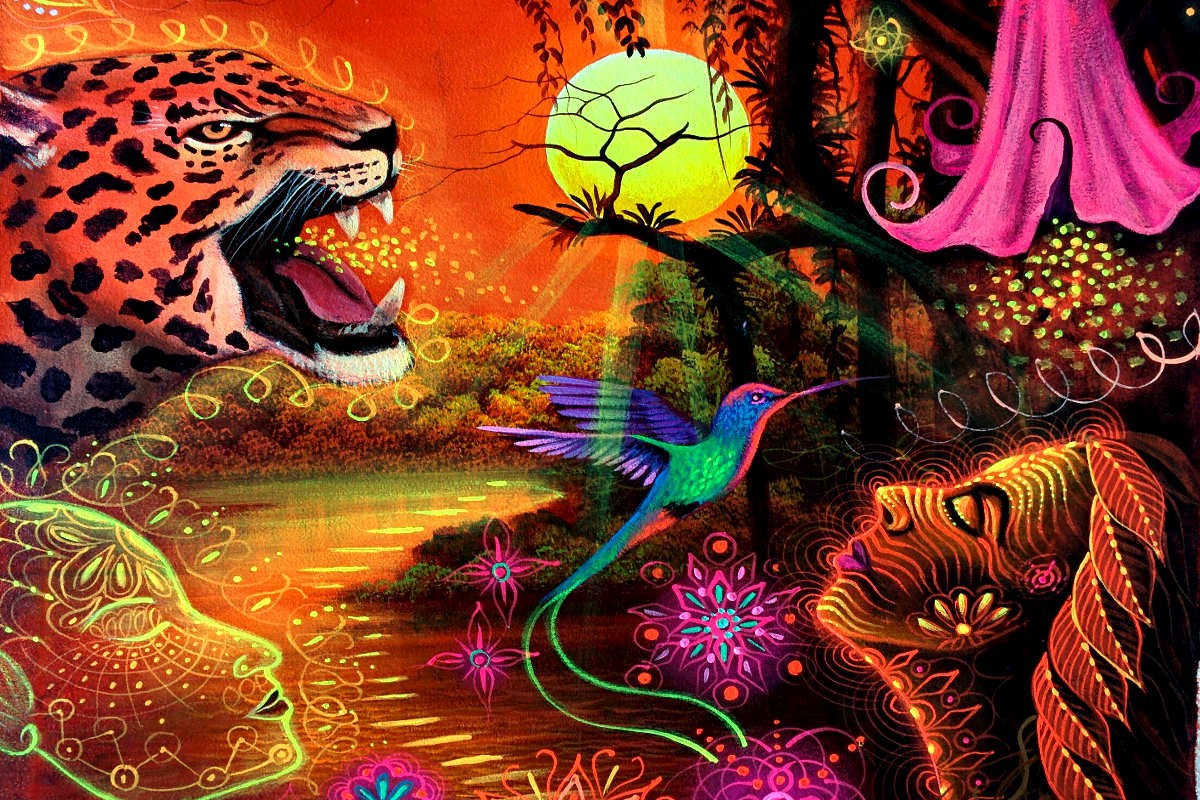 A Collection Of Ayahuasca Documentaries, Movies, And Books