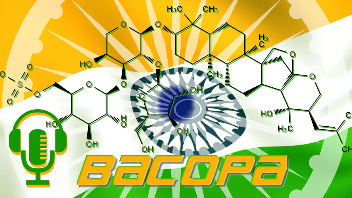 Bacopa: the Ayurvedic Adaptogenic Herb that takes time…