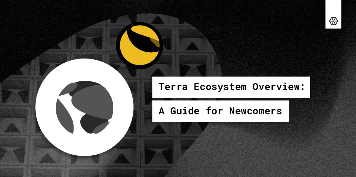 Terra Ecosystem Overview: A Guide for Newcomers