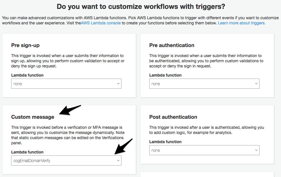 Using Lambda + AWS Cognito Triggers to Only Allow Auto-Verification