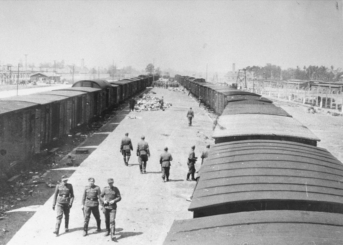Remembering the Long Road to Auschwitz