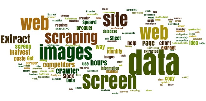 Setting up Scrapy and Selenium for Dynamic Webpages