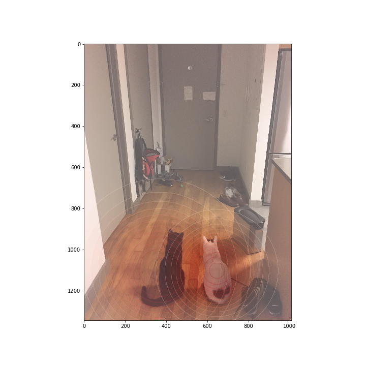 Offline Object Detection and Tracking on a Raspberry Pi