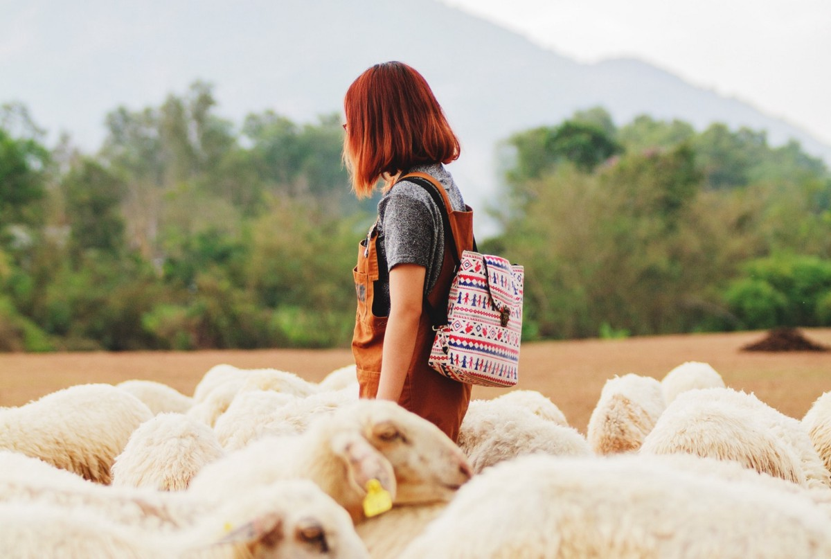 How To Challenge The Herd Mentality At Work