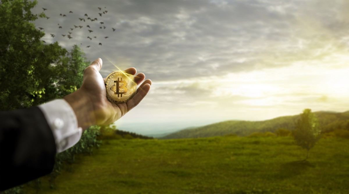 Let's Talk About Cryptocurrency. Is It Really Bad For the Environment?