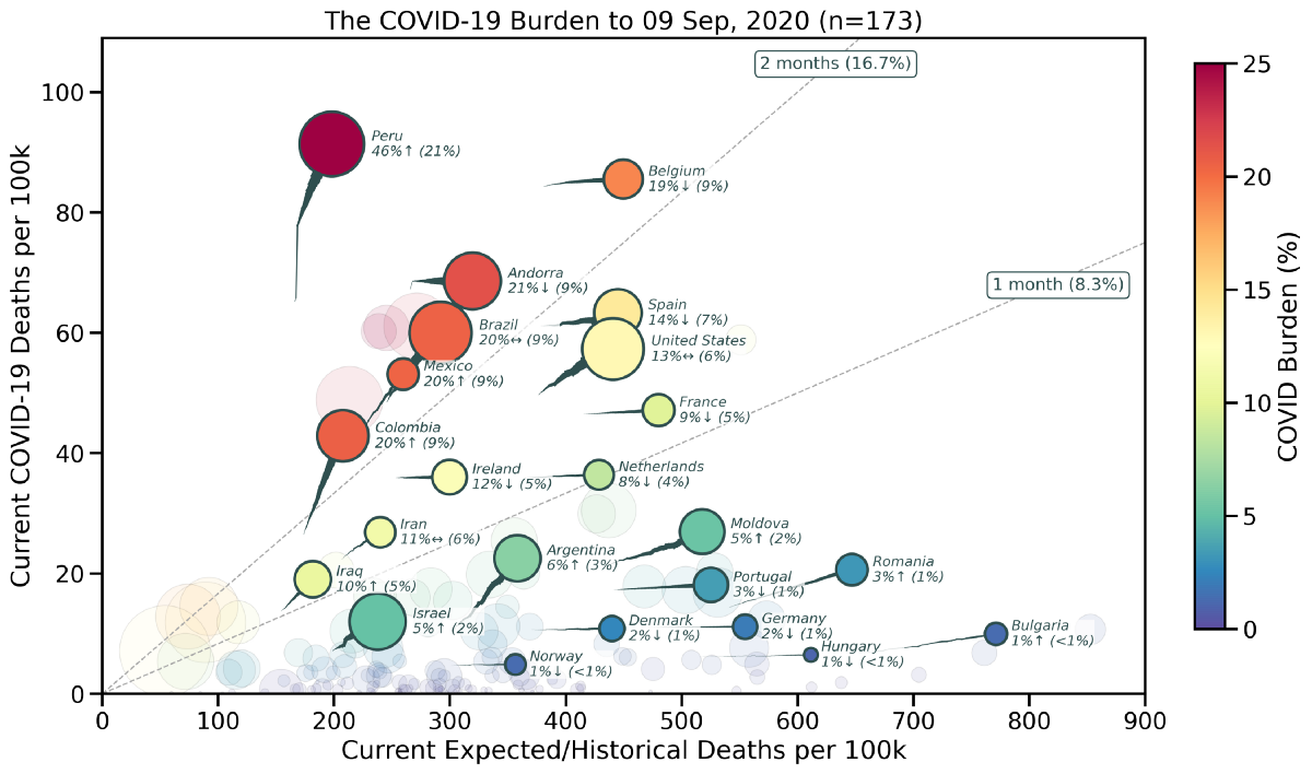 The Burden of COVID-19