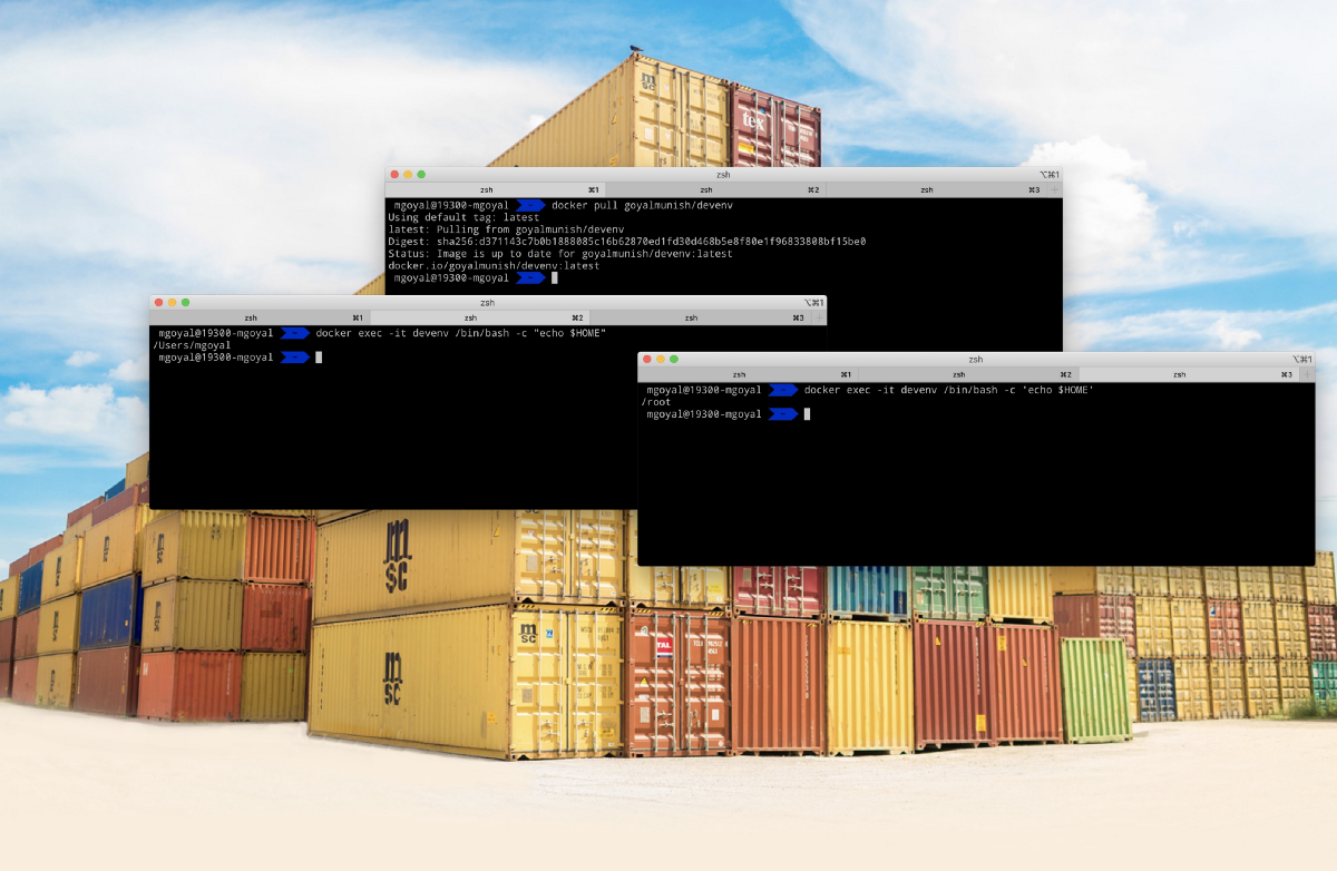 Passing Host vs. Container Environment Variables to docker exec