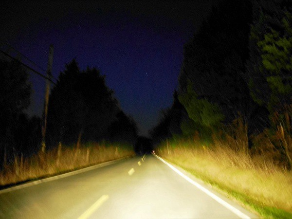 A country road at night lite up by car headlights, tall grass and trees on either side of the pavement