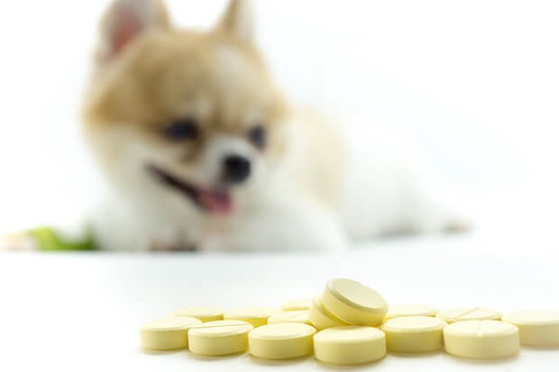 Can a $5 Over-the-Counter Medication for Dogs Cure Advanced-Stage