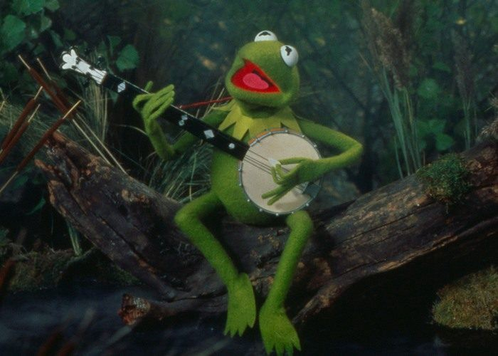 Kermit The Frog Messed Me Up Tenderly
