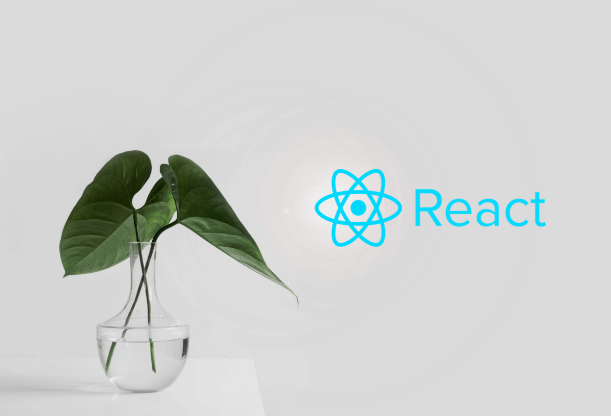 Why React Is a Great Career-Starter For New Developers
