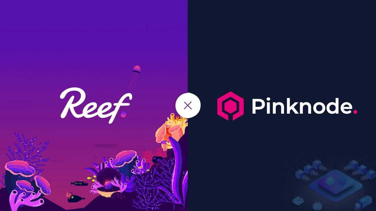 Reef Finance and Pinknode Come Together to Provide Secure and Reliable API Endpoints