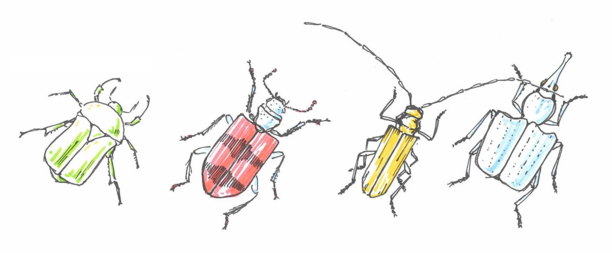Estimating Bugs — Yes or No?