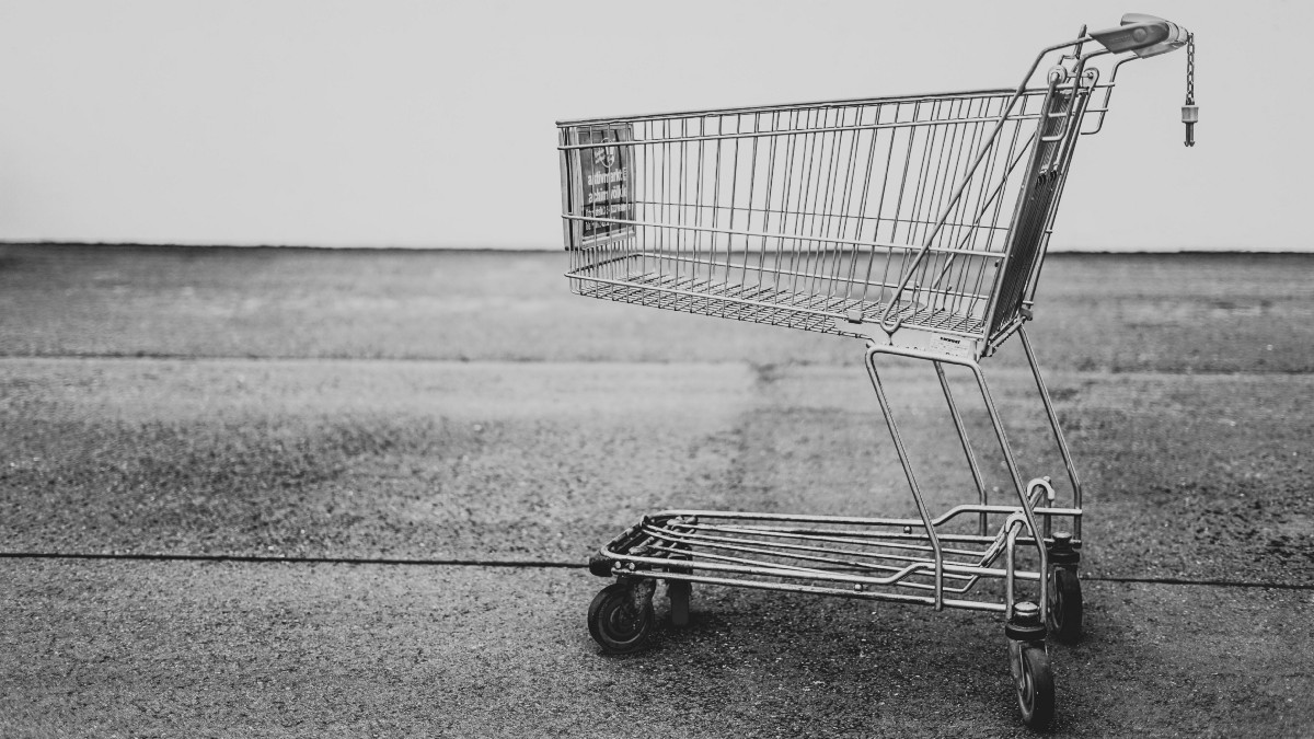 Building Shopping Cart for the User