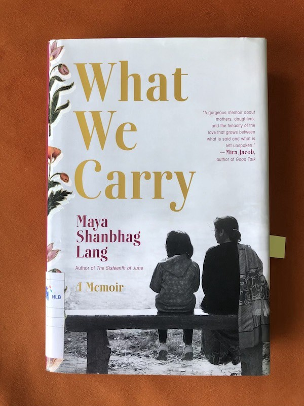 Book cover What We Carry