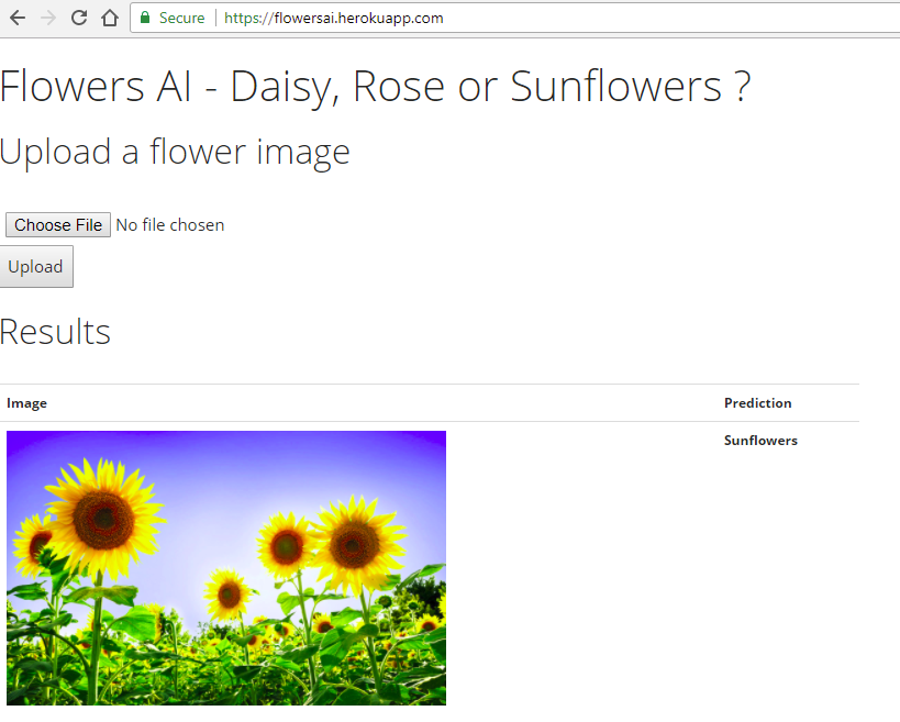 Create Flower Image Classification with Tensorflow, Keras