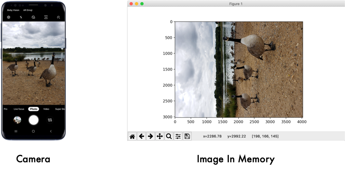 The dumb reason your fancy Computer Vision app isn't working: Exif Orientation