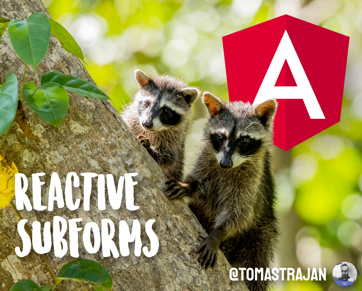 The Best Way to build reactive sub-forms with Angular