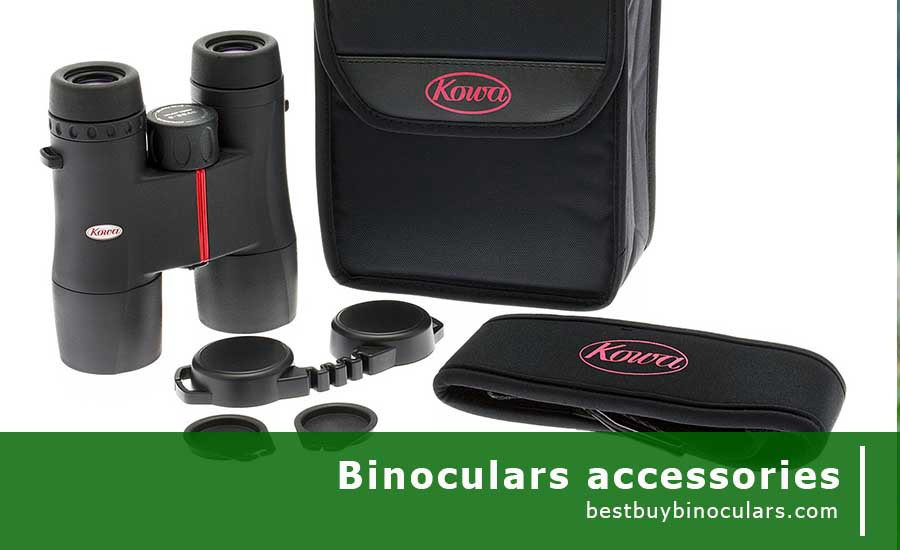 How To Choose Binoculars Accessories For Money No One Tells You