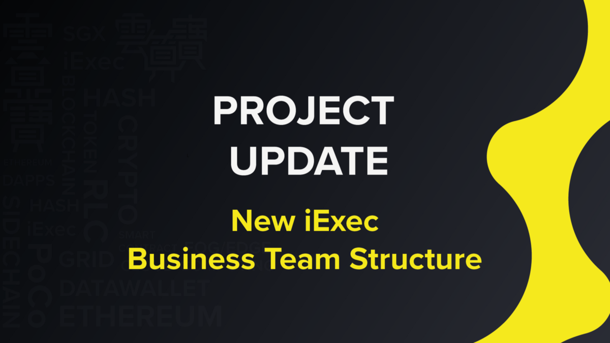 A New Business Team structure for iExec