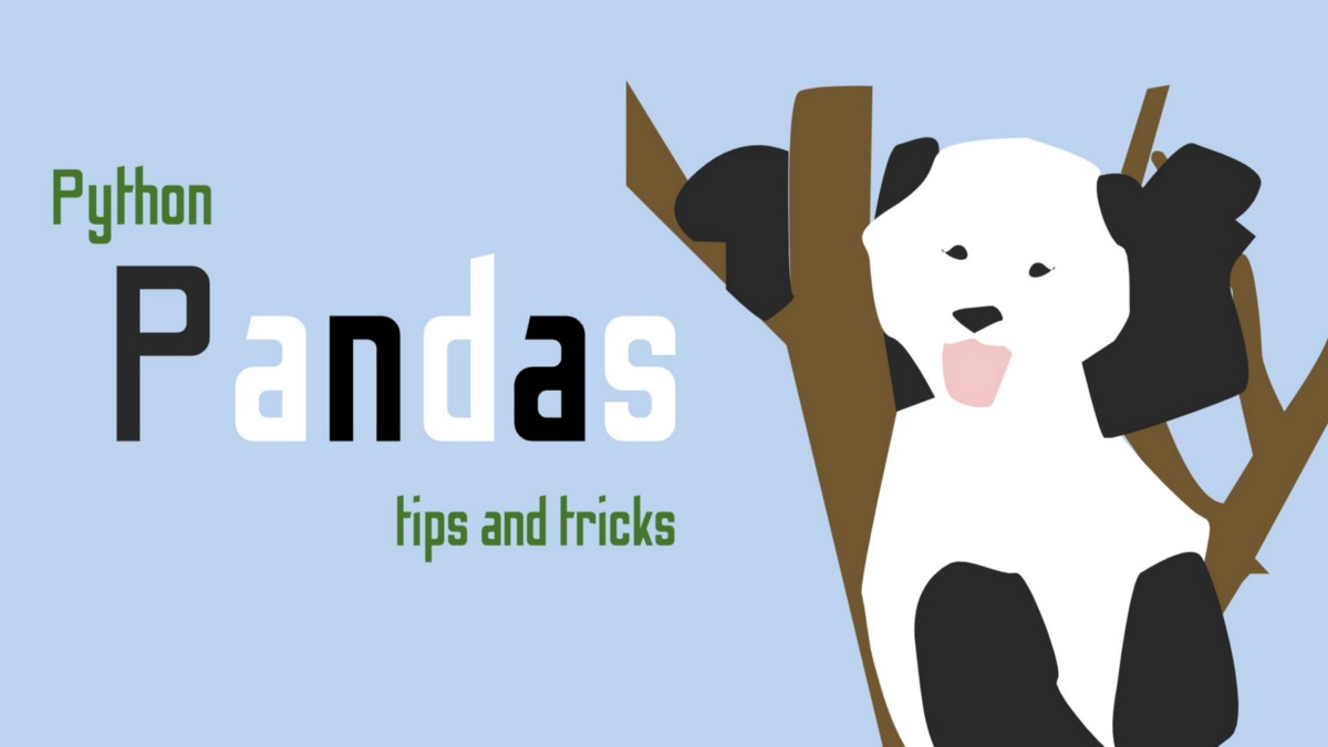 Top 20 Great Pandas Tricks For Data Science