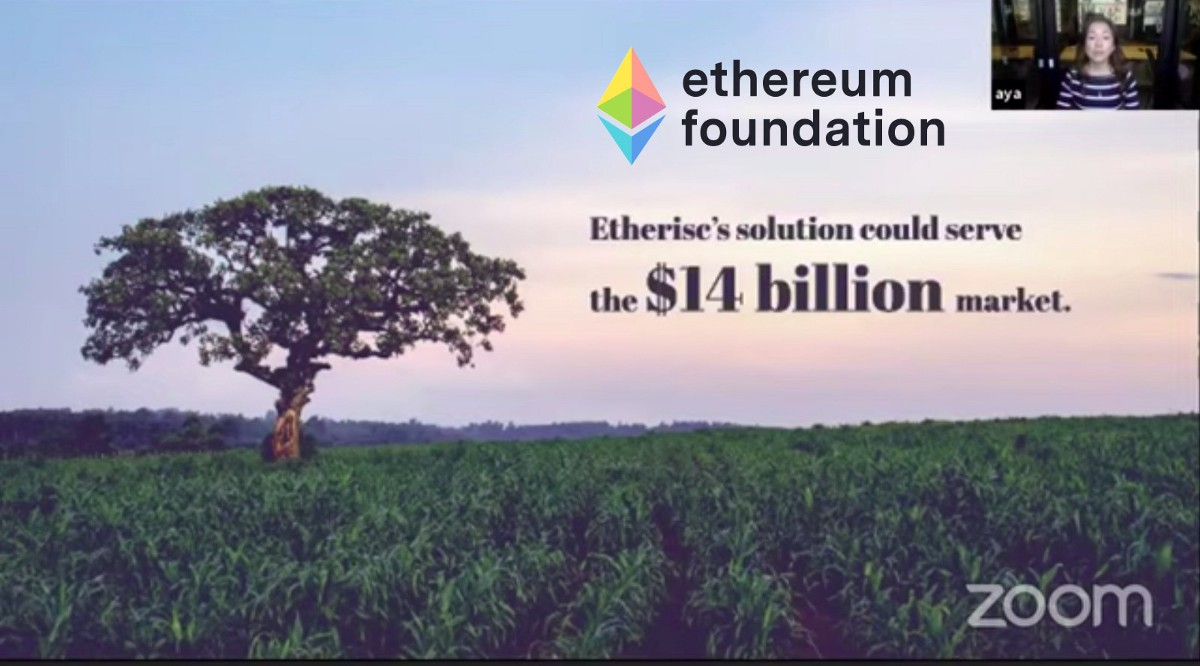 Etherisc's crop insurance initiative in Kenya earns support from Ethereum Foundation