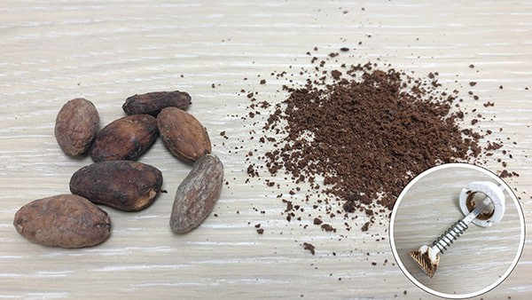 Cocoa beans and cocoa beans powder