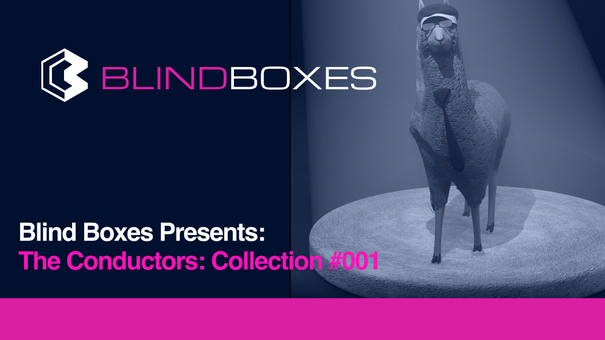 Blind Boxes Presents: The Conductors: Collection #001