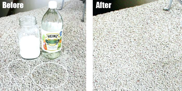 Remove dog urine with vinegar and baking soda and hydrogen
