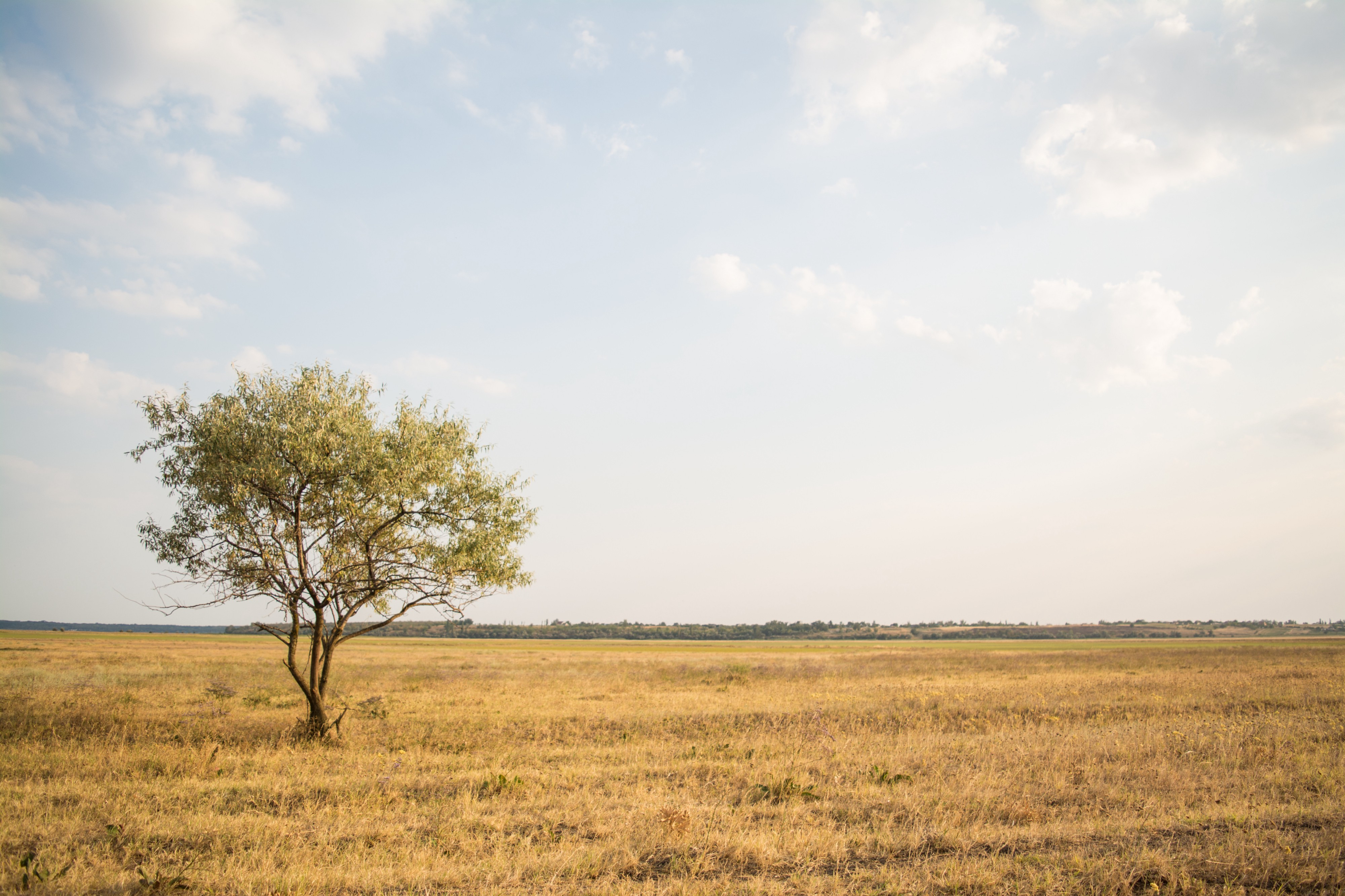 Landscape photography using the rule of thirds