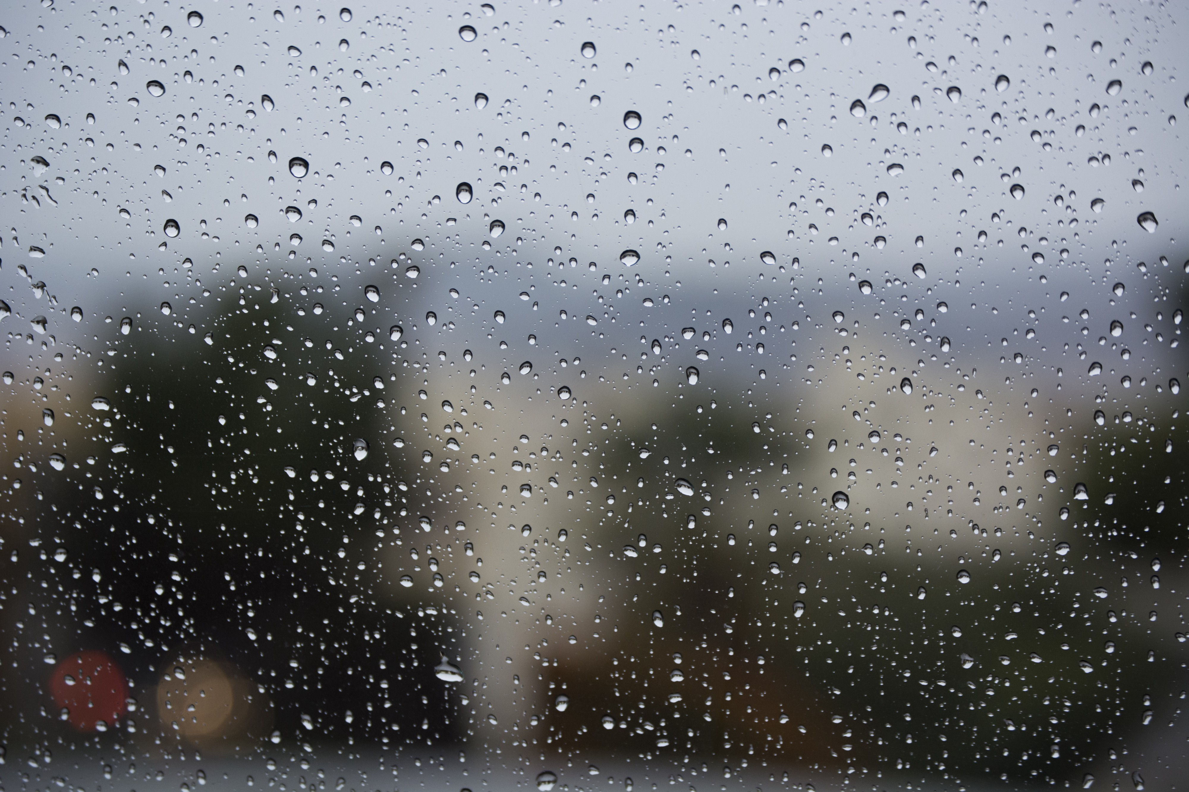 Rainy Day Thoughts Are Stored Deep In The Well - Koinonia