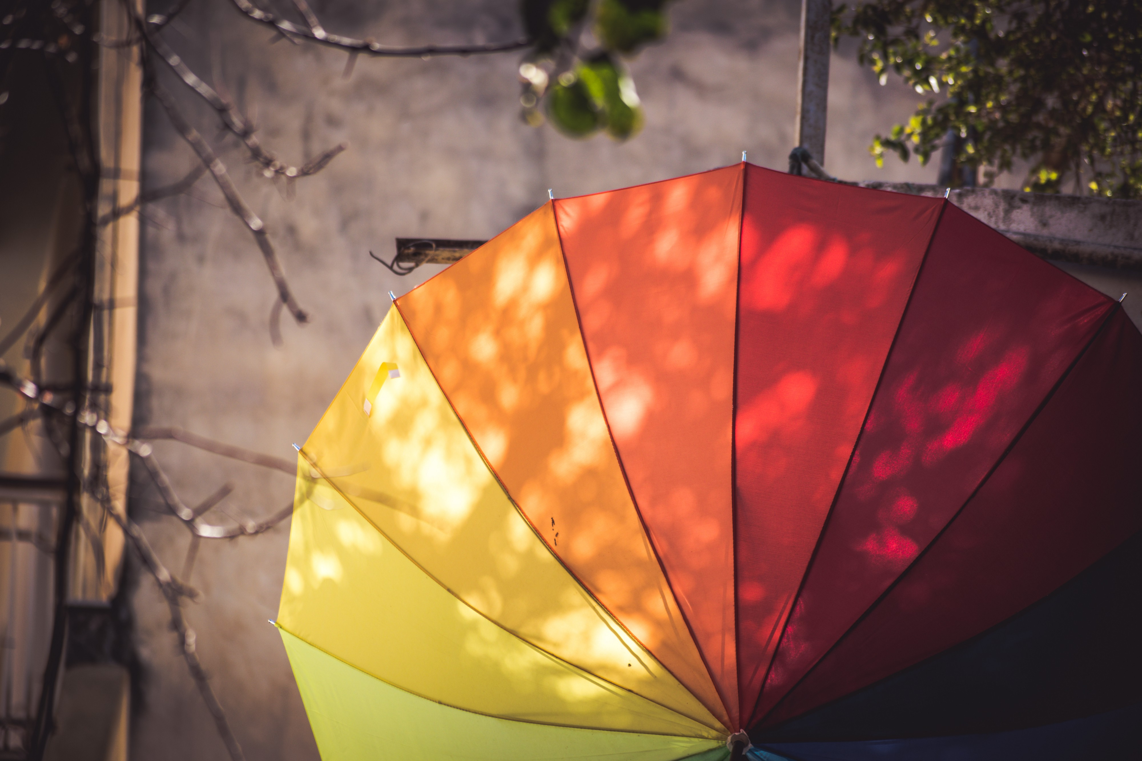 Analogous Colors and Color Wheel. Colours signify Life ...