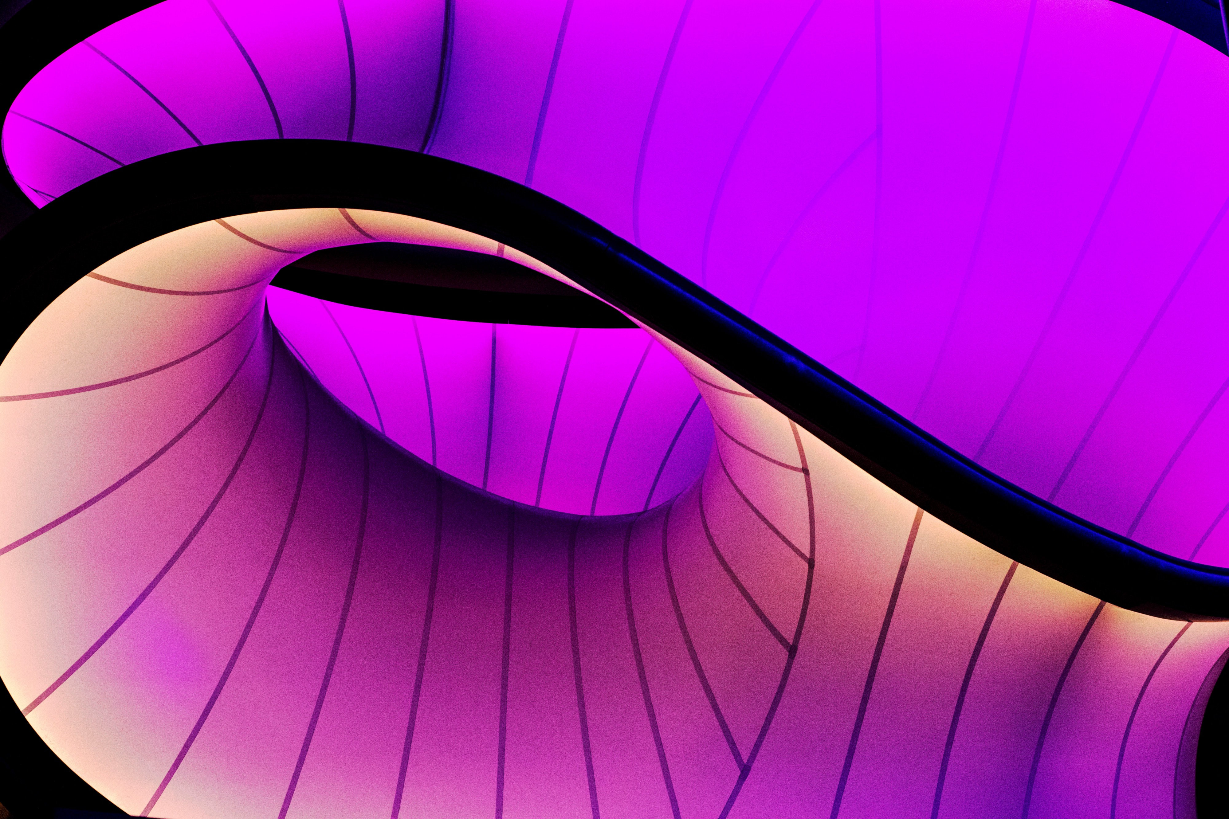 abstract image showing a black curve with pinks and yellows in the background
