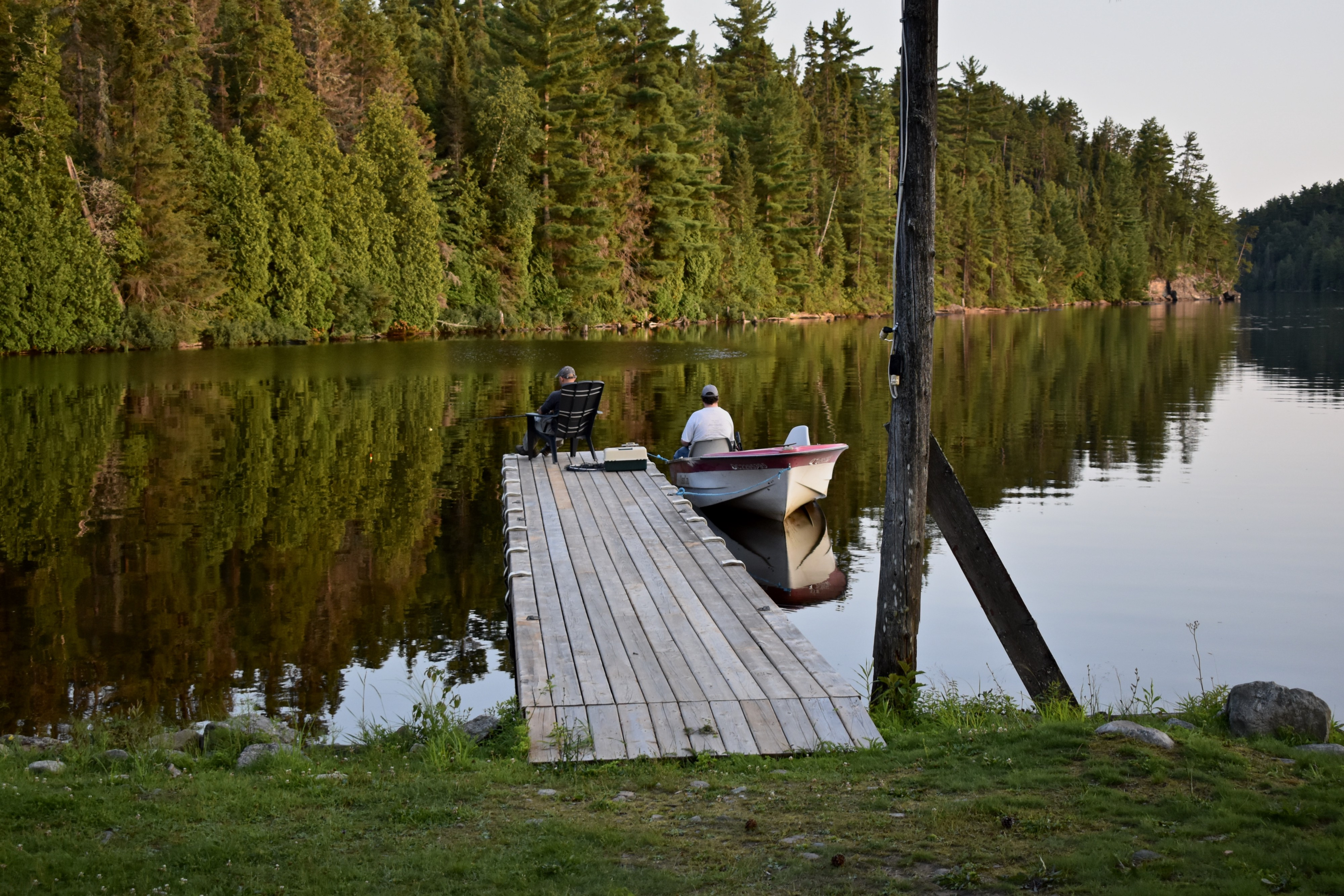 Two men fishing from the end of a dock, with a wall of conifer trees in the background.