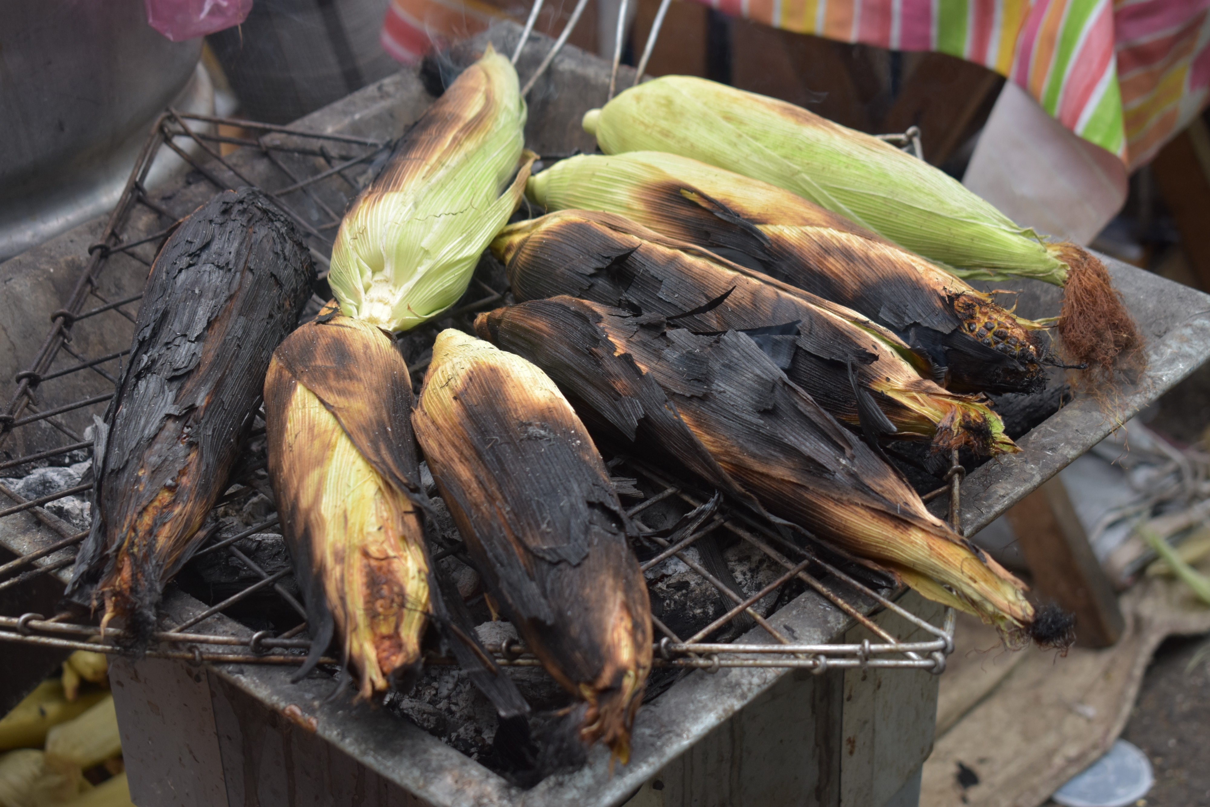 Grill corn with husk on corn, corn with husk burning on grill in Oaxaca, Mexico. Mexican corn — food, cooking corn