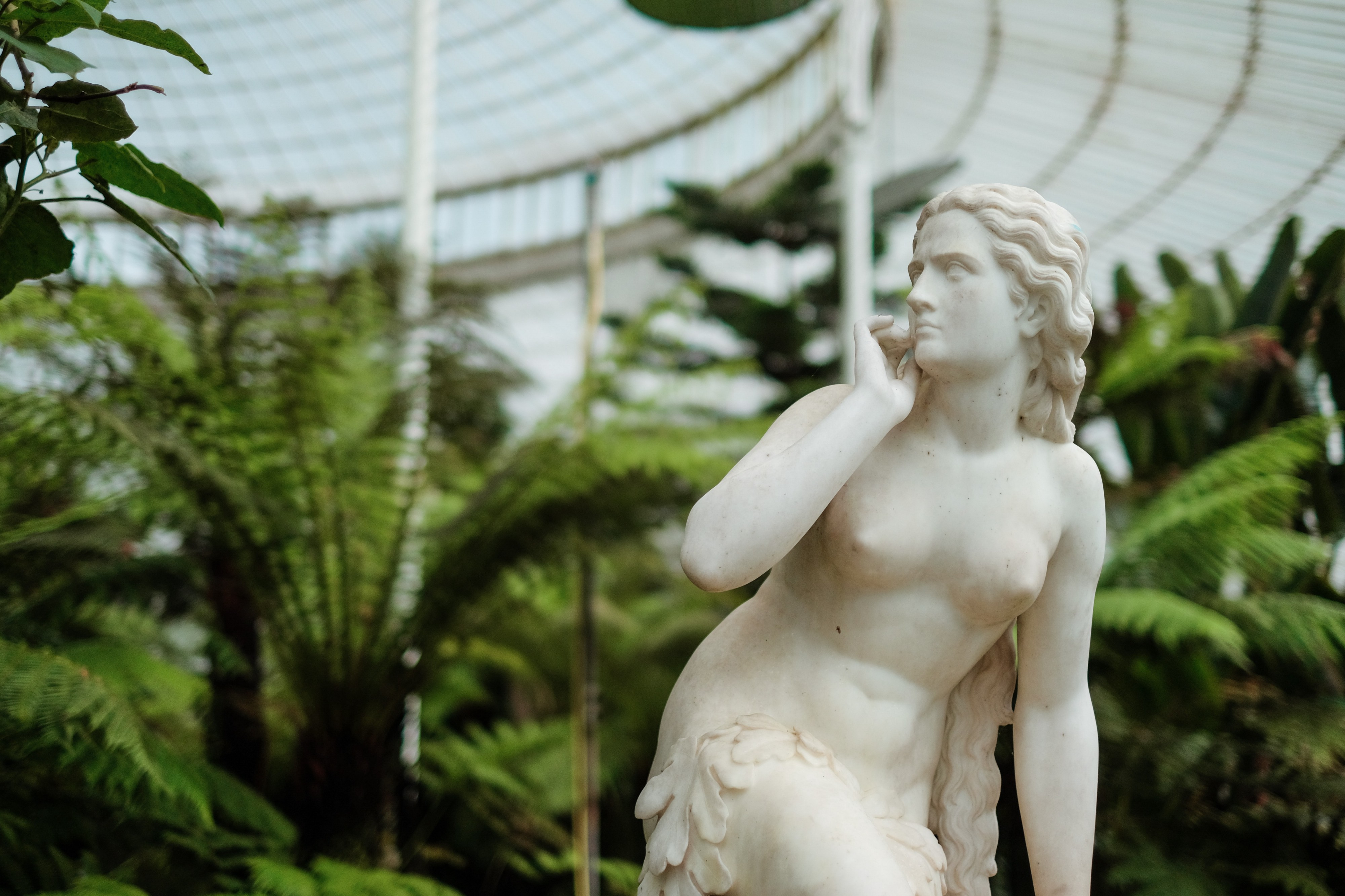 A marble statue of a thin woman looking off to the side, angrily and mistrustfully. The statue stands in front of lush ferns.