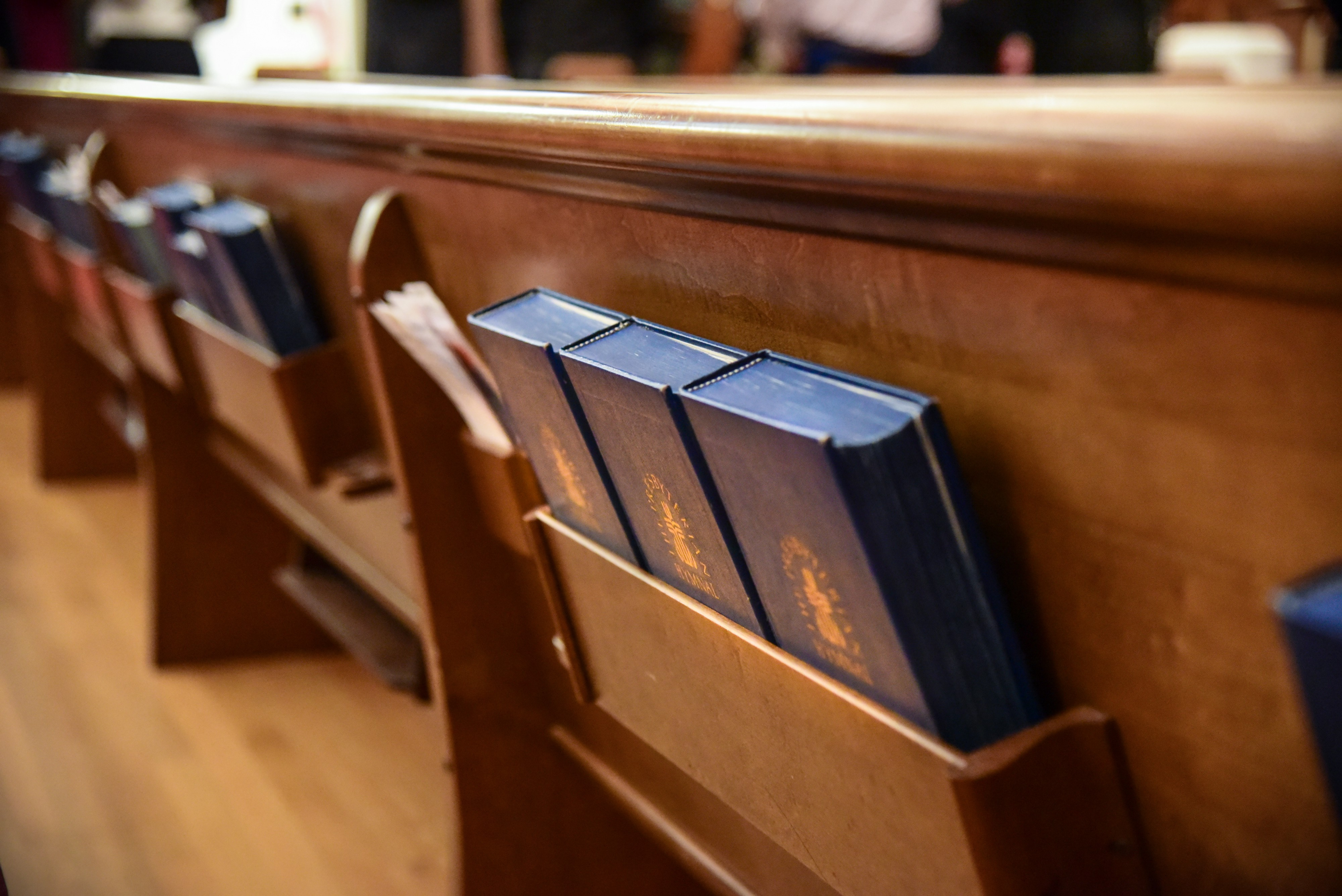 Hymn Reflection: Holy, Holy, Holy, Lord God of Hosts