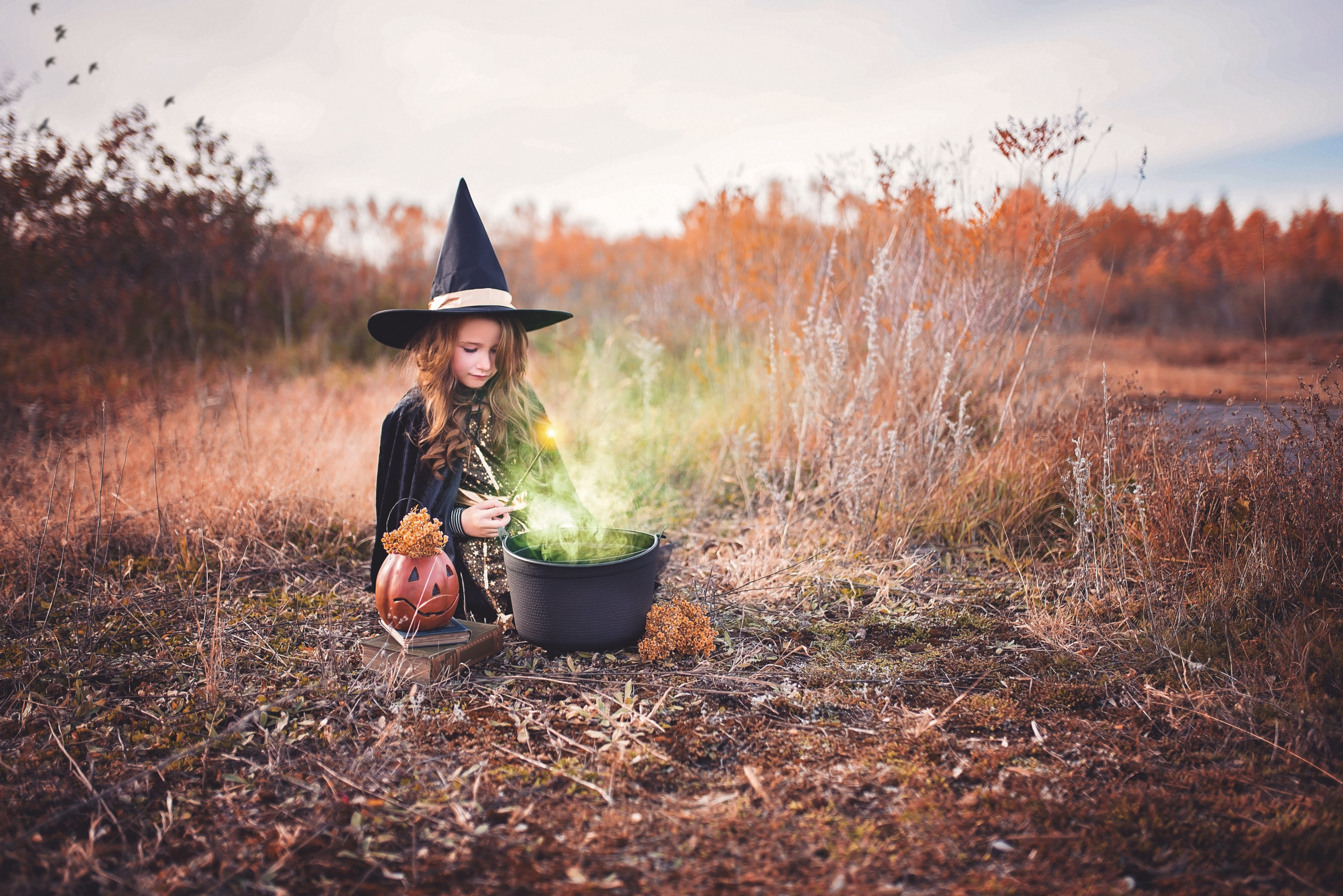 Young girl in a witch costume with a smoking cauldron in front of her.