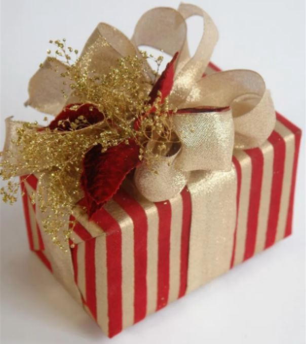 Wrapped Christmas Gift