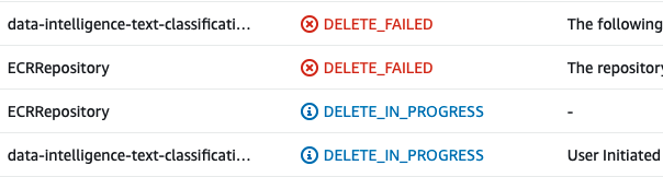 The following resource(s) failed to delete: [ECRRepository].