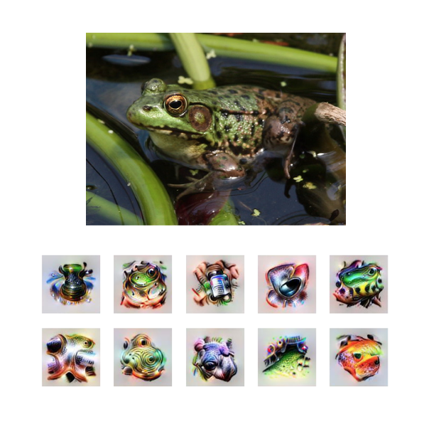 Image of frog with 10 visualization produced from it by computer vision. User selects 4 of the 10 which best represent frog.