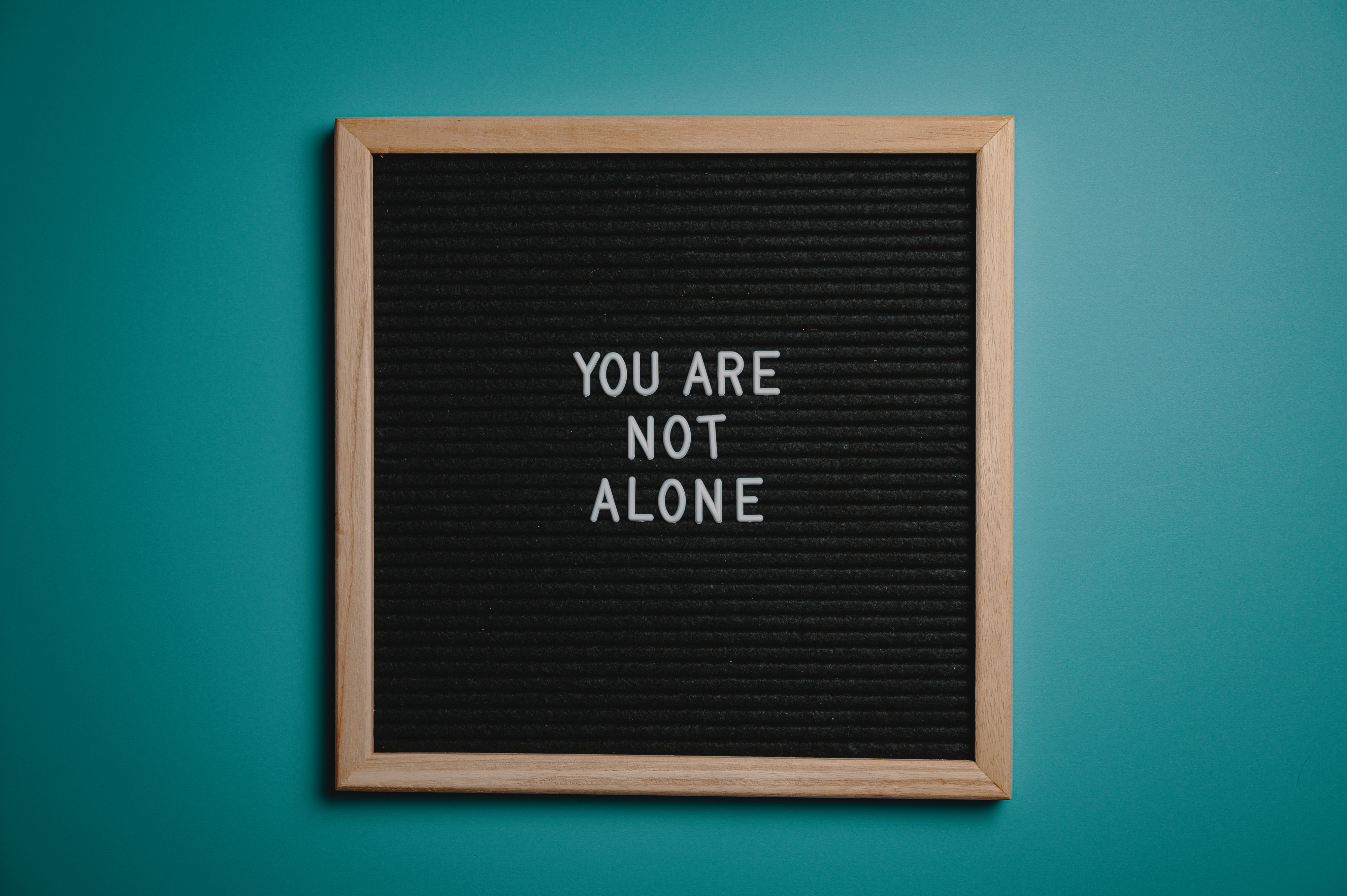 A word board with the phrase 'You Are Not Alone' written on it