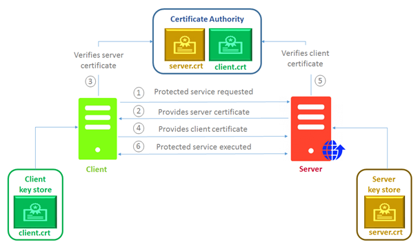 Implementing Mutual SSL Authentication - CloudBoost