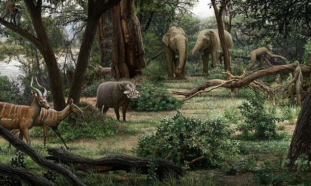 Painting reconstruction of Ardipithecus in its natural environment by Mauricio Anton